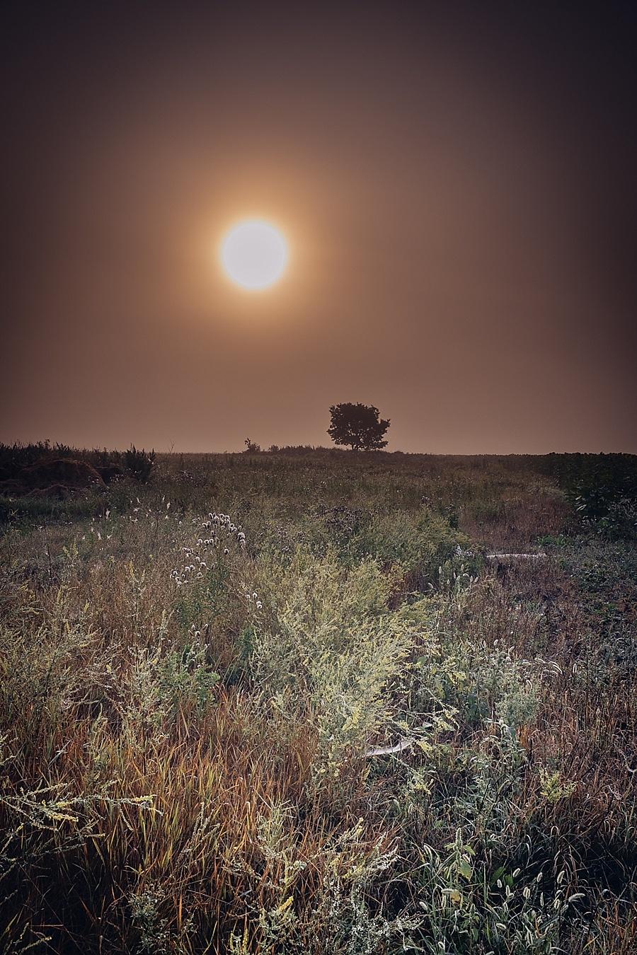 foggyAM_By_Ian_MCAUSLAND-3